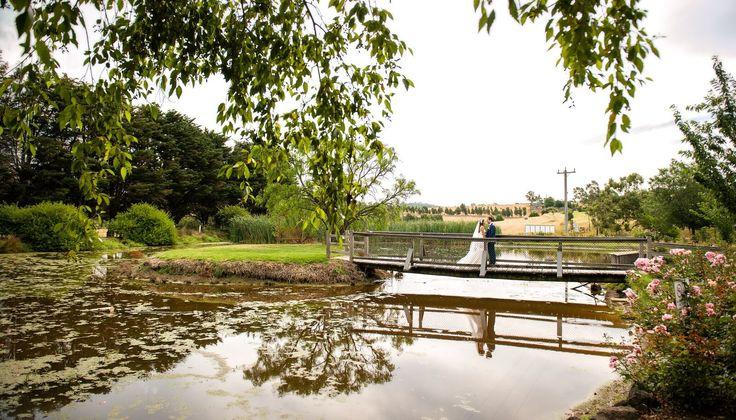 Garden Lake - Wedding Photos