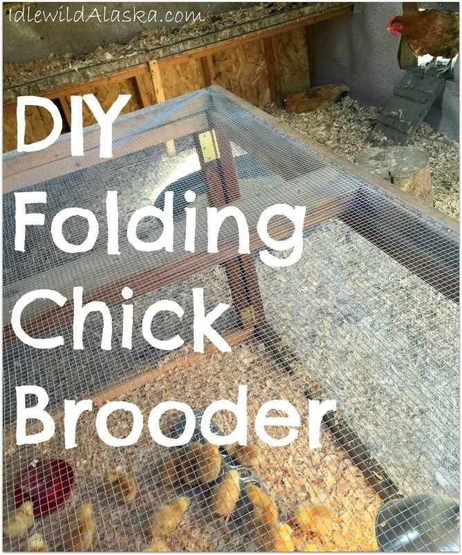 DIY Folding Chick Brooder - Idlewild Alaska