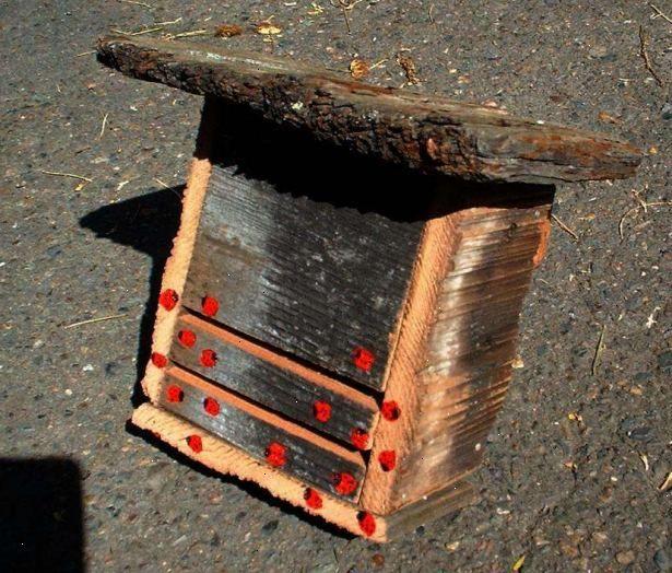 Hoe maak je een lieveheersbeestje huis te bouwen. Vind een stevig stuk karton in de vorm van een doos of vel of laminaat!