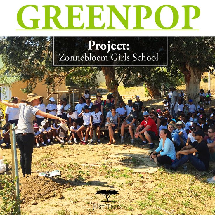 On 21 February 2017, we donated 41 Celtis africana, Olea europaea subsp. Africana & Syzygium cordatum 10L to  Zonnebloem Girls School. We were delighted to join Greenpop in adding more greenery to the school. Keep an eye on our page for more information on various other projects we've worked on.