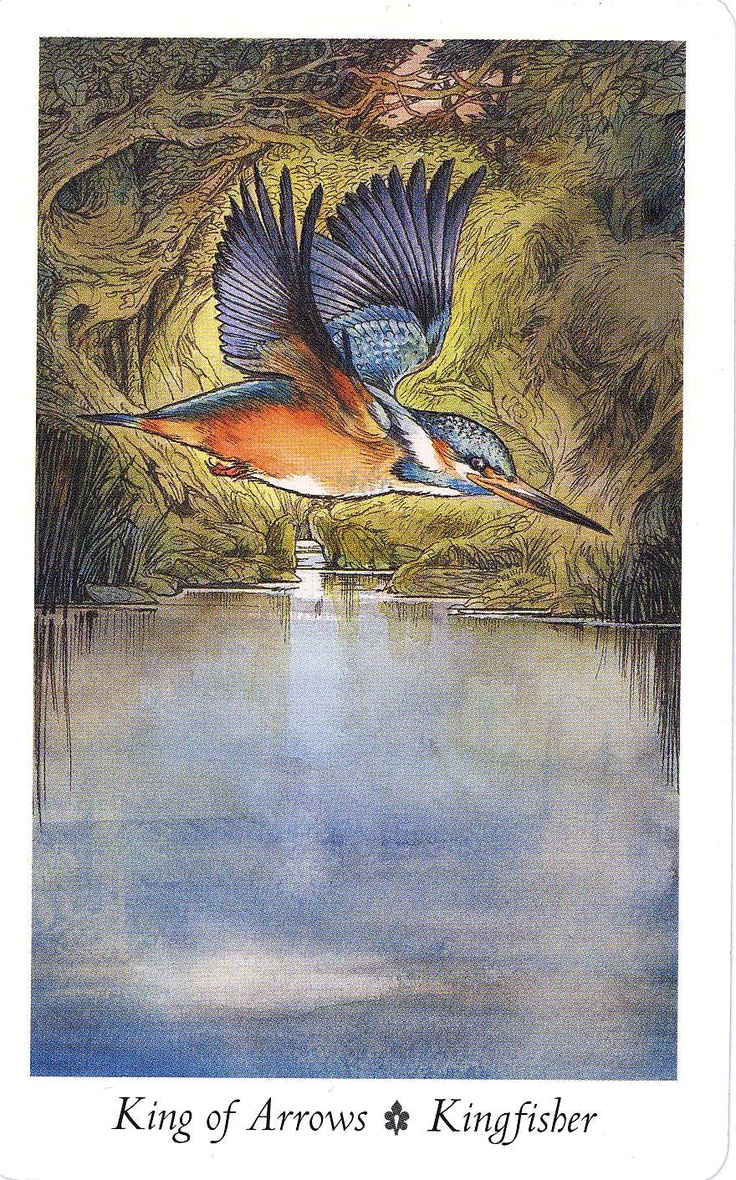 King Fisher From The Wildwood Tarot