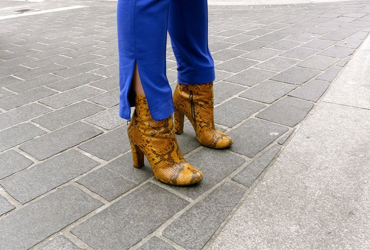 Colour blocking pants and shoes #royalblue #yellow #snakeskin