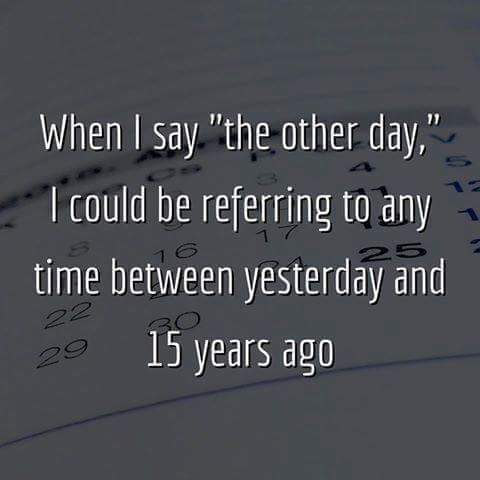 """When I say """"the other day,"""" I could be referring to any time between yesterday and 15 years ago....LOL, so true! =)"""