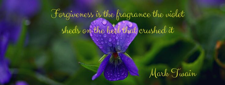 #forgiveness #crushed #love #violet #marktwainquote