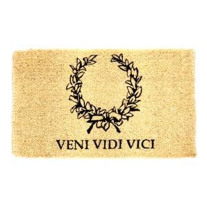"""""""Veni, Vidi, Scripsi"""": The Literary Conquests of Gaius Julius Caesar"""