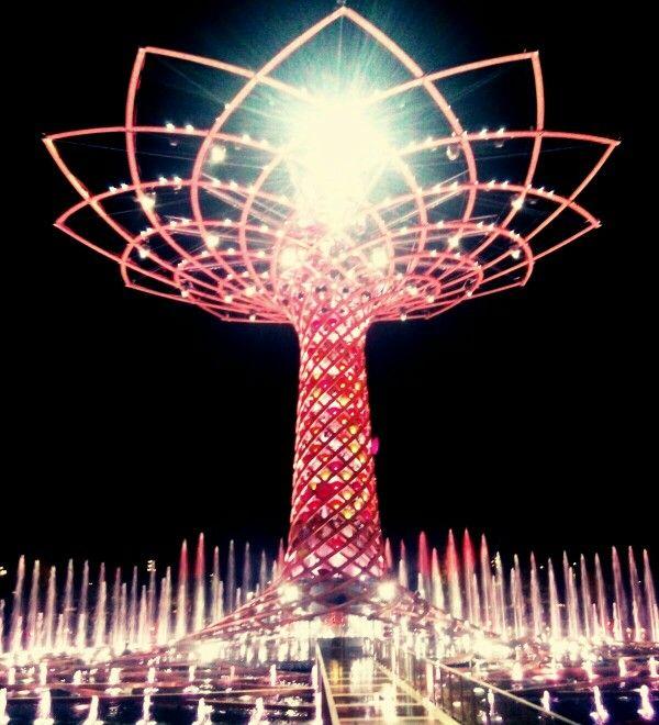 Tree of life - EXPO Milano 2015