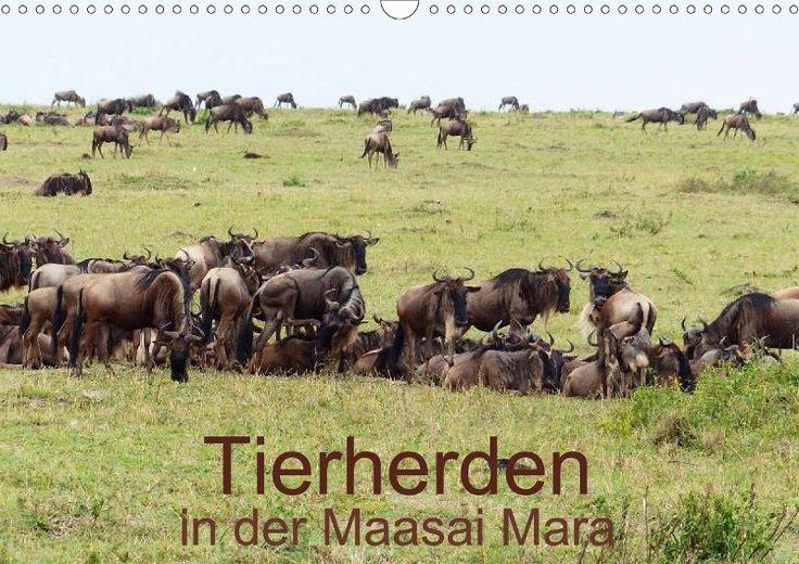 http://www.calvendo.de/galerie/tierherden-in-der-maasai-mara/?s=Brigitte%20D%C3%BCrr&type=0&format=0&lang=1&kdgrp=0&cat=0&