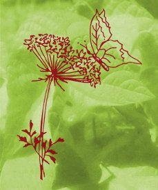 Dreschflegel GbR - Biologisches Saatgut - Logo