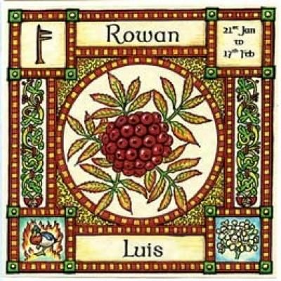 "Rowan, Ogham name Luis, rules 21st January to 17th February and its element is that of Fire. It is also known as ""Quicken Tree"" ~ the tree of life, in Norse it is called ""Runa"" meaning rune or charm for magic."