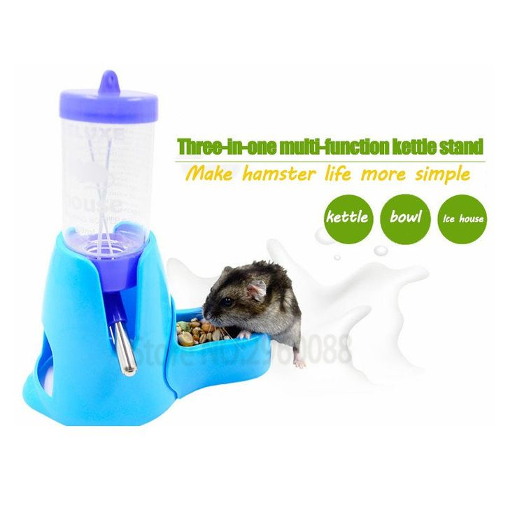 80ml  Hamster Water Bottle With Detachable Food Bowl 3 colors available