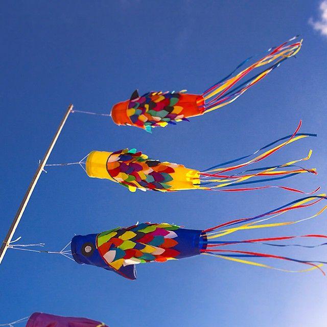Fish kites, Seminyak, Bali, Indonesia