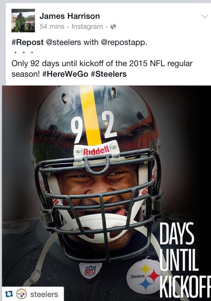 Pin by Nicole Renee Sneathen on Pittsburgh Steelers!!! | Pinterest