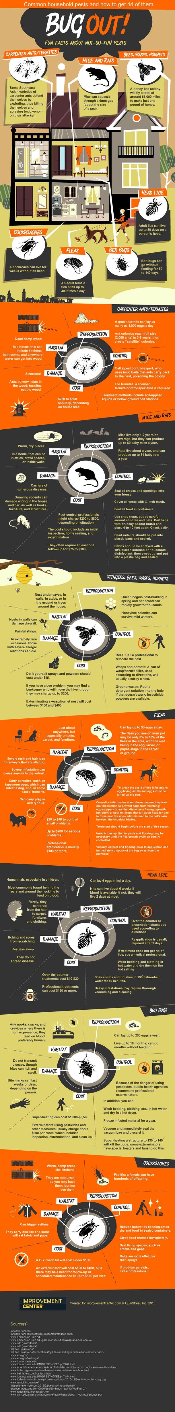 pest control inforgraphic