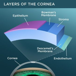 Fuchs' corneal dystrophy is a disorder of the front surface of the eye (cornea) that usually affects older adults. Here are seven key facts about Fuchs' dystrophy you should know. #Cornea #Fuchs #CoastalEyeInstitute