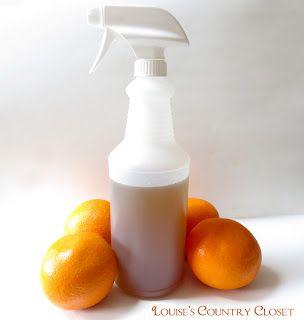 evitar gatos: hervir cáscaras de naranja durante 10 minutos y escurrir