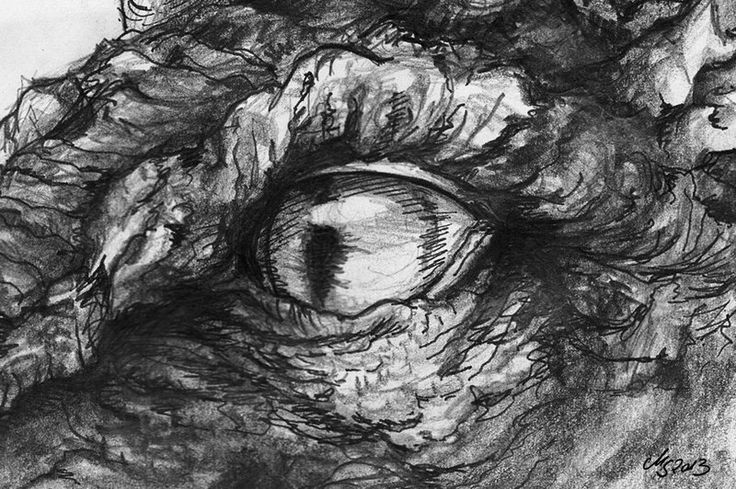 how to draw a realistic dragon eye