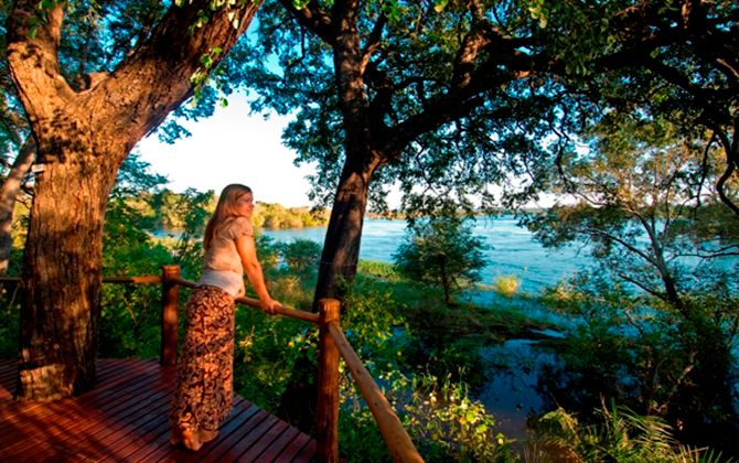 5-star Luxury Zambezi Break
