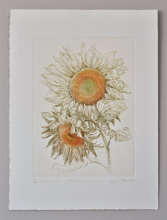 Sunflower Helianthus  handmade copper-plate by AtelierPoltorak