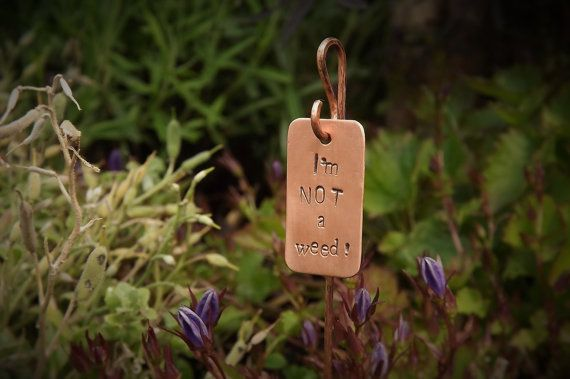 Set of 3 garden plant tags in mixed metals. Handmade solid copper or brass pegs with tags available in copper, brass or aluminium (silver).
