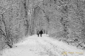 paseo de invierno  JuanKRuales Photography