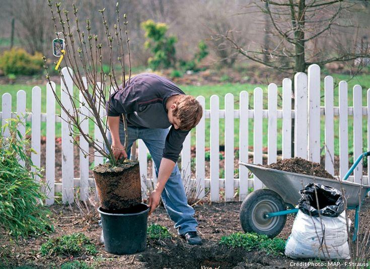 Les 22 meilleures images du tableau Clôture jardin sur Pinterest ...