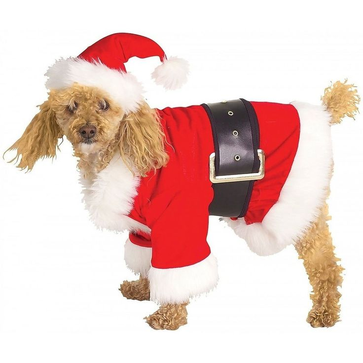 Dog Christmas Costumes Pet Santa Claus Funny Fancy Dress #RubiesCostumeCoInc