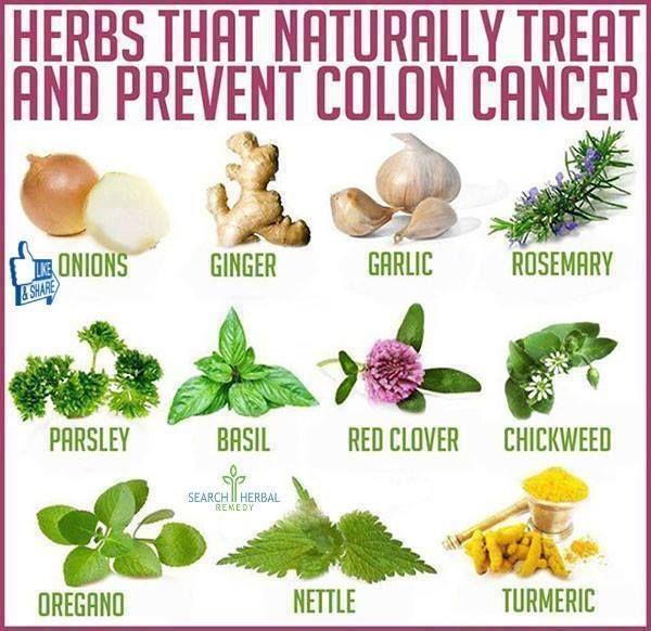 herbs for intestinal health
