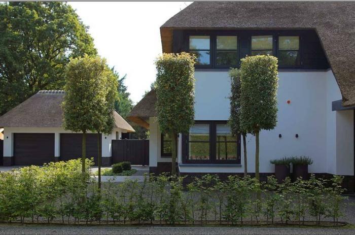 a garden by dutch landscape architect martin veltkamp via gardenista