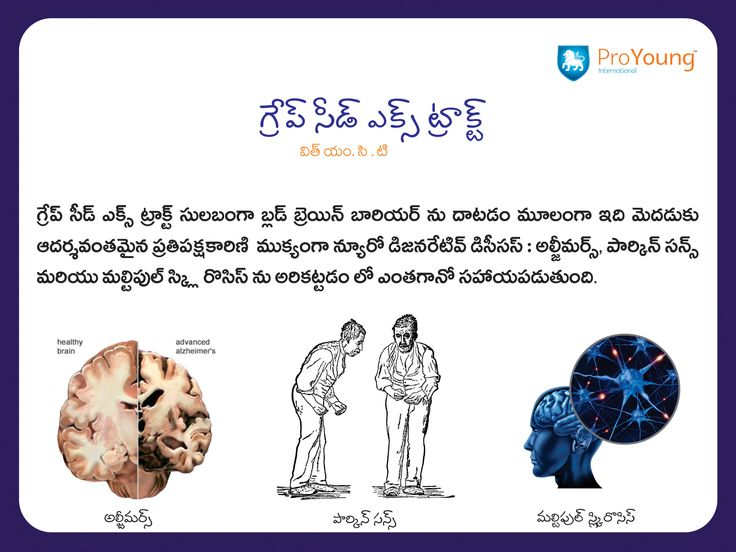 14 best grape seed extract with mct telugu images on pinterest powerful immune booster effective weight management healthy heart regulates blood sugar promotes ccuart Gallery