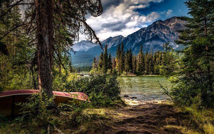 trees, canoeing, lake of pyramids, albert, canada