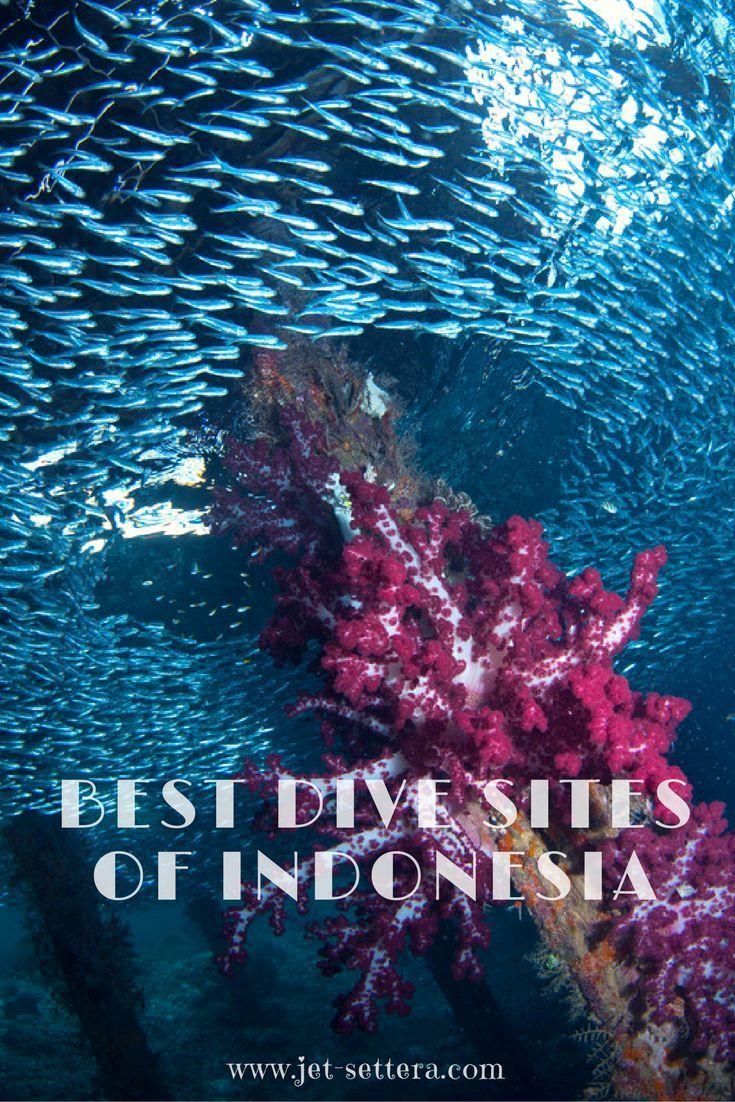 The best scuba diving sites in Indonesia are Tulamben in Bali, Batu Bolong in Komodo Islands, Arborek in Raja Ampat, Nudi Falls in Lembeh and Kal's Dream. via /jetsettera7/