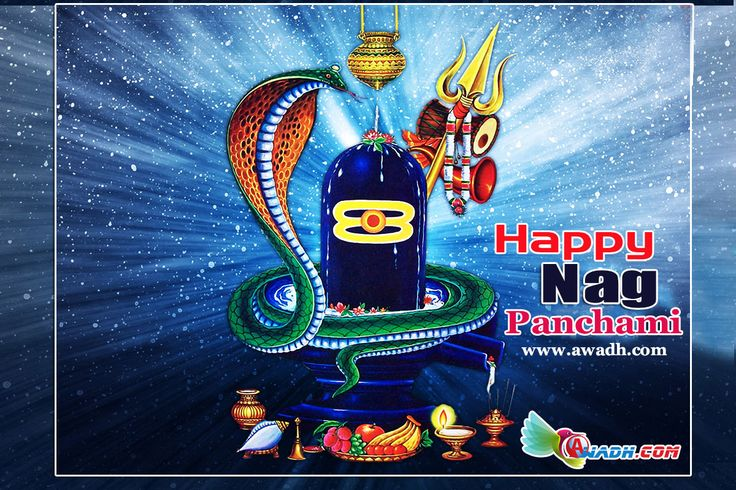 India celebrates #Nag #Panchami today. The festival is observed on the Shukla Paksha Panchami during Sawan month in the Hindu calendar. Women worship the Snake god or the #Nag #Devta and offer milk to the serpents. It symbolises offering of milk to the snake gods. Women pray for the well being of their brothers and family members. #Happy #Nag #Panchami http://awadh.com/