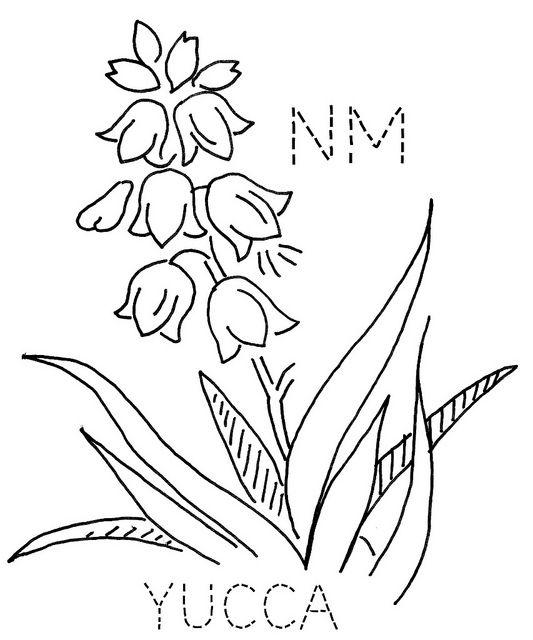 юкка цветок рисунок