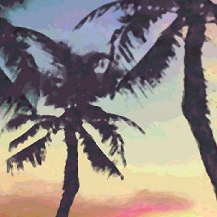 palm trees near the sea - detail