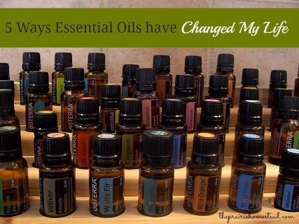 5 ways essential oils have changed my life from The Prairie Homestead