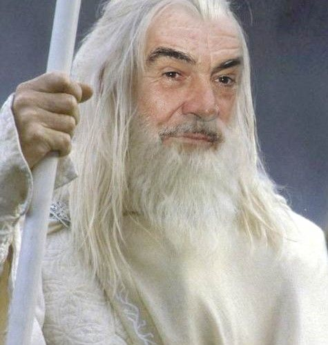 Sean Connery could have been Gandalf!