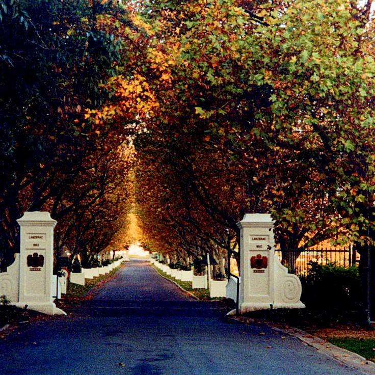 Lanzerac Estate entrance