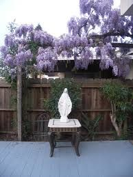 Image result for marian gardens