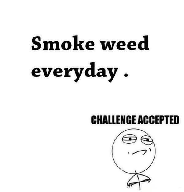 Smoke #Weed everyday