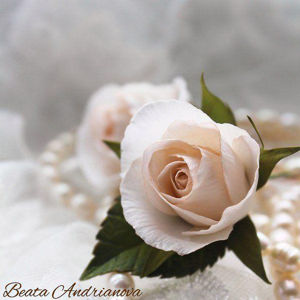 Работаю над шпильками. :) #розышпильки #шпильки #цветыизфоамиранаКрасноярск #розыизфоамирана#цветыизфоамирана #свадебныеукрашения #цветочныеукрашения #украшениядляволос #фоамиран #красноярск #цветы#flowers #inspiration#homemade #ручнаяработа #wedding#свадьба #decor #presents #подарки#handmadeflowers #foamiran#flores#розы#krasnoyarsk#beautiful #instasize #instapic#rose #handmade