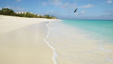 Eagle Beach is what comes to mind when you imagine a perfect beach - pristine sand, sparkling water and a cooling breeze has made this one of the world's favorite beaches!