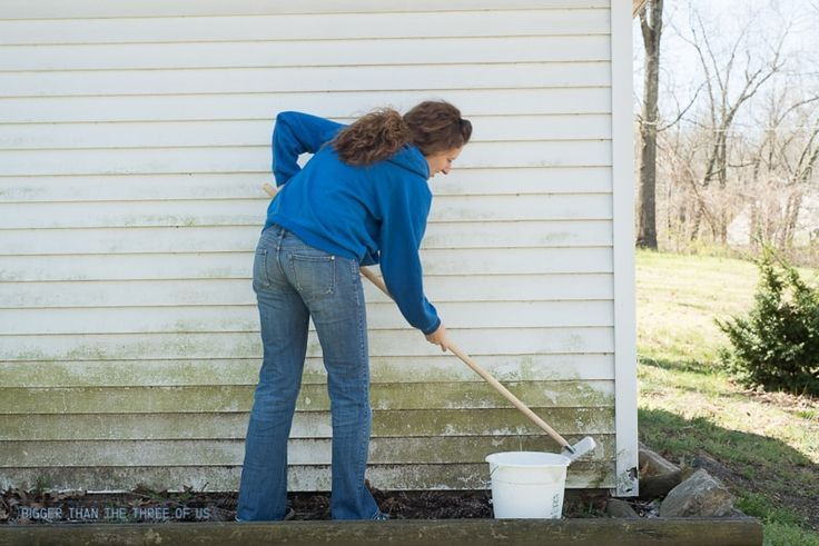 How To Clean Siding Without A Power Washer Bigger Than The Three Of Us Clean Siding Cleaning Vinyl Siding Cleaning Aluminum Siding