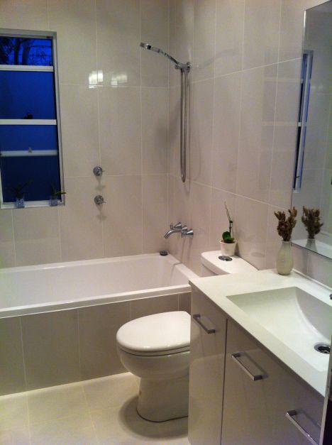 Small bathroom renovation- Burrowbee