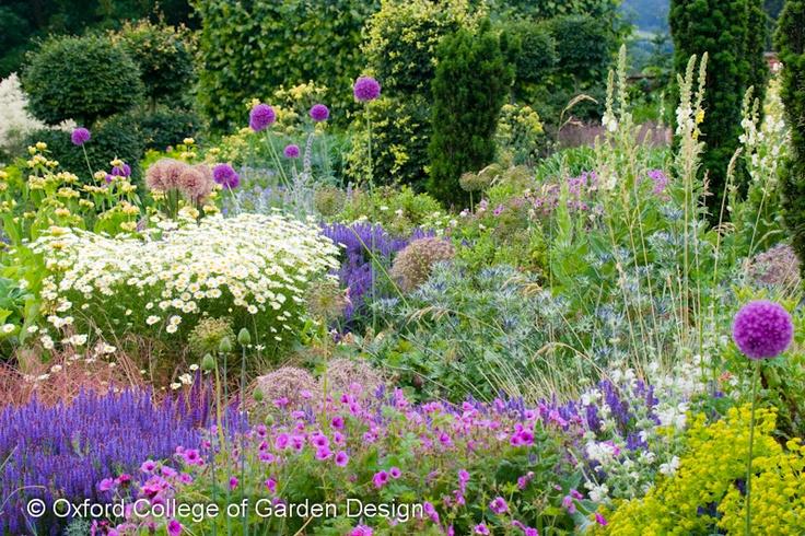 Garden ideas border ideas perennial planting perennial combination - 25 Best Images About Mixed Border On Pinterest Gardens