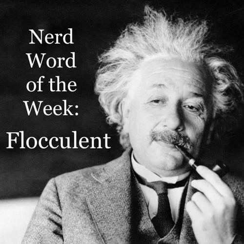 Nerd Word of the Week: Flocculent ~ having or resembling tufts of wool. As in: Einstein's flocculent locks helped to make him an iconic figure.