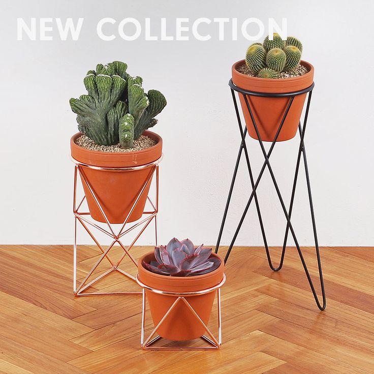 die besten 25 pflanzenst nder ideen auf pinterest. Black Bedroom Furniture Sets. Home Design Ideas