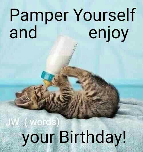 Top 20 Very Funny Birthday Quotes: Best 20+ Funny Birthday Sayings Ideas On Pinterest