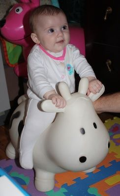Milly the Milk Cow