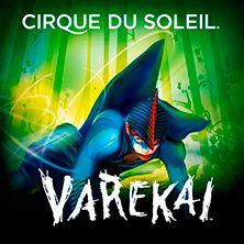 Varekai, le cirque du soleil