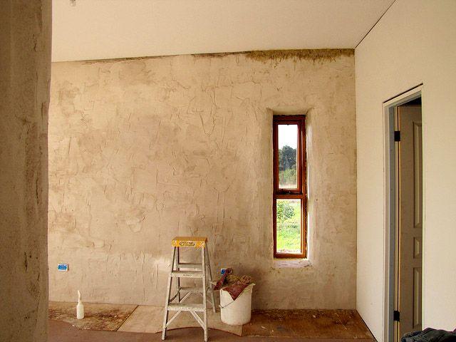 Microrganismi Efficaci per l'edilizia